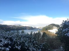 Snowy day at Lake Vyrnwy
