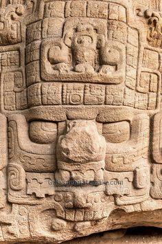 Detalle de Zoomorfo P Sur en Quiriguá