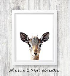 Deer Print Fawn Print Digital Download Nursery Room Baby