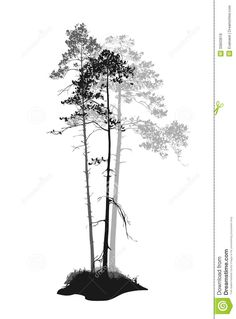 tree line silhouette - Google Search