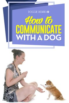 How to communicate with a dog >> http://doggiedesires.com/how-to-communicate-with-a-dog/