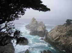 Carmel One Of My Favorite Places..Love The Lone Cypress Trees Along The Coast..Breathtaking!! Life Memories