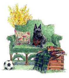 Michelle Masters...Scottish terrier on topiary sofa with plaid  scottie dog