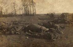 British casualties at Le Cateaua.jpg