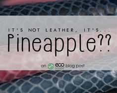 It's Not Leather It's...Pineapple?? a blog post by EcoGoodz, a Credential Clothing Supplier in the USA