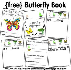 Free printable butterfly book including space to write observations of caterpillars, pupa and hatching butterflies.