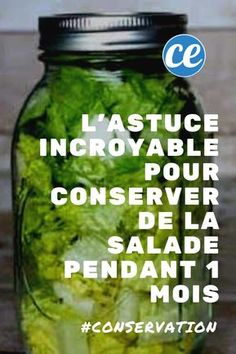 L'Astuce Incroyable Pour Conserver de la Salade PENDANT 1 MOIS. Do you want to keep your fruits and vegetables longer? Here is the trick to keep your salad for 1 month! Healthy Salad Recipes, Healthy Breakfast Recipes, Growing Vegetables, Fruits And Vegetables, Cucumber Onion Salad, Caesar Salat, Caprese Salat, 1 Monat, Drink Dispenser