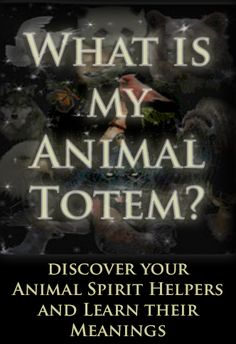 What is my Animal Totem? I am a Raven, just thought it was interesting...
