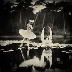 Shooting a Swan Lake Photo with Wet Plate Collodion Photography