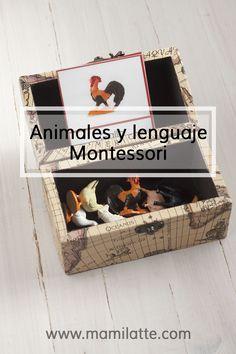 Animales y lenguaje en la pedagogía Montessori.   MamiLatte