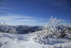 Perisher Valley NSW #Australia http://www.tripadvisor.com.au/ShowForum-g255058-i121-New_South_Wales.html