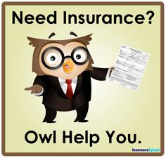 Whoooo needs insurance?