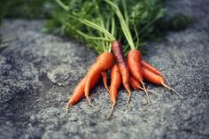 second thinnings by juliepersons, via Flickr