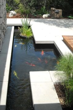 Beautiful Koi Pond Designs You Can Build To Complement Your Backyard | Koi Ponds Design No. 12636 | #koi_pond #garden_pond #landscaping Outdoor Fountains, Outdoor Water Features, Outdoor Decor, Home Decor, Homemade Home Decor, Outdoor Water Fountains, Interior Design, Decoration Home, Home Interiors