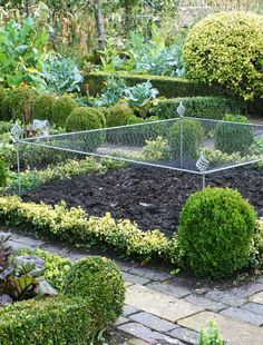 Agriframes Elegance Crop Cage Corner Piece Crop cage height extensions allow you to increase the height of your cage. A maximum of 2 height extensions is recommended, giving you a total height of up to to accommodate the larger plants. Potager Garden, Edible Garden, Vegetable Garden, Garden Landscaping, Fruit Cage, Garden Arches, Large Plants, Garden Structures, Plantation