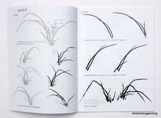"""Chinese Painting Book """"Learn to Paint Orchid from Master Wu Changshuo Qi Baishi"""" Sumi E Painting, Chinese Painting, Painted Books, Flowering Trees, Learn To Paint, Art Drawings, Drawing Art, Flower Arrangements, Stencils"""