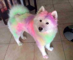 А ещё краски есть?