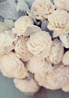 Creamy English Roses