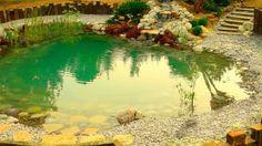 Piscinas naturales - estanque
