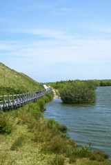 Insel Amrum Bild Von Elli Pirelli Amrum Bilder Lizenzfreie