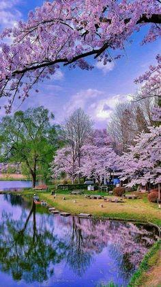 La razón de esto es que toda creación de Dios es excelente. (1 Timoteo 4:4) SB Nature Landscape, Spring Landscape, Nature Nature, Wild Nature, Beautiful Scenery, Beautiful Images, Simply Beautiful, Beautiful Landscapes, Beautiful World