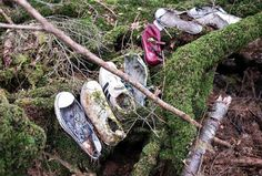 Aokigahara (the suicide forest) *warning* some disturbing photos. Very interesting and sad story.