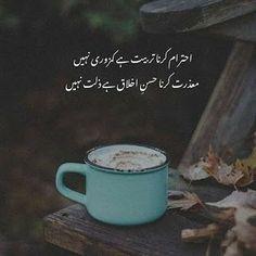 Soul Poetry, Poetry Quotes In Urdu, Best Urdu Poetry Images, Love Poetry Urdu, Poetry Feelings, Qoutes, Sufi Quotes, Mixed Feelings, Inspirational Quotes In Urdu