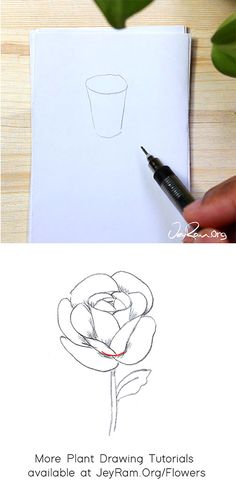 How to Draw a Rose : Step by Step for Beginners — JeyRam Art Roses Drawing Tutorial, Flower Drawing Tutorials, Rose Tutorial, Beginner Henna Designs, Henna Designs Easy, Beginner Drawing, Drawing For Beginners, Rose Step By Step, Step By Step Drawing