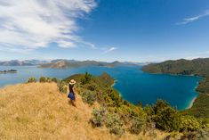 Beautiful view above Bulwer -- on the drive to French Pass, Marlborough Sounds, New Zealand Marlborough Sounds New Zealand, French Pass, New Zealand South Island, Pop Culture References, Old Town, Road Trip, Places To Visit, Around The Worlds, Travel
