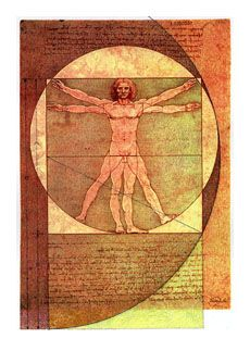 "Leonardo da Vinci's ""Vitruvian Man"",   showing the golden ratio in body dimensions"