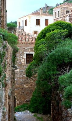 The trees and the stones ~ Monemvasia, Peloponnesus, Greece - by George Koultouridis. Monemvasia Greece, Corfu, Crete, Malta, Corinth Canal, Santorini Villas, Myconos, Greece Art, Greek Islands