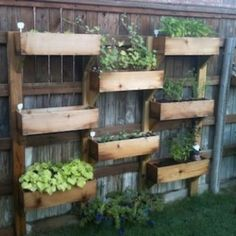 This is a great idea, save space in your yard, and could line your garden walls with it