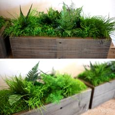 Moss and ferns are naturally preserved to create this care-free mini indoor garden by Artisan Moss. Simply place the reclaimed wooden box wherever you want a touch of the outdoors!