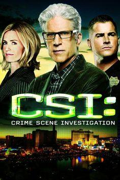 CSI Crime Scene Investigation   finale