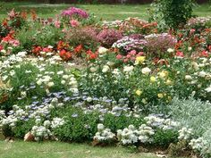 botanical+flower+gardens | avid gardeners whether they plant vegetables flowers or just love ...