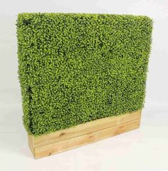 Bespoke Artificial Hedging | Made to Measure Fake Hedges | Blooming Artificial