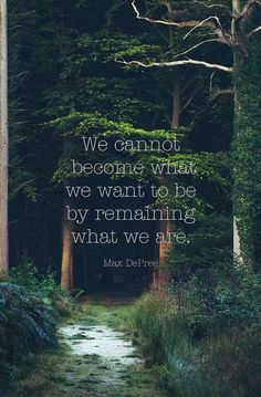 We cannot become what we want to be by remaining what we are. - Max DePree