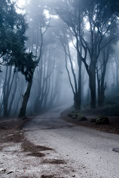 "500px / Photo ""The last road"" by Jorge Maia"