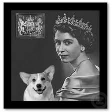 Queen Elizabeth II and one of her many corgis. She has been devoted to them for 70 years and none other!
