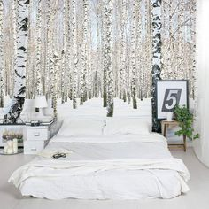 Snowy Birch Forest White Bedroom Accent Wall