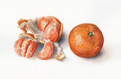 Tangerine, Watercolour, Nicola Cavalla, SAA Professional Members' Galleries