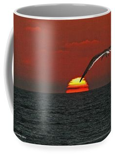 Black Skimmers Coffee Mug featuring the photograph One Black Skimmers At Sunset by Tom Janca