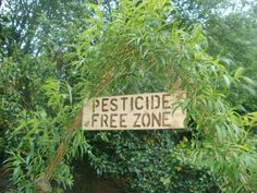 Riverside is a pesticide free zone.