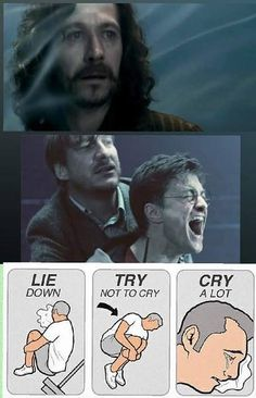 The worst part of this, is that's one of lupin's best friends, and all he does is comfort harry.