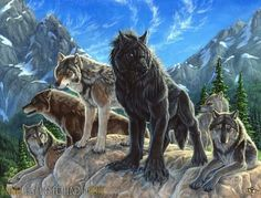 """Whimsical animal, anthro, wildlife, and fantasy artwork with a mystical touch by renowned artist Christy """"Goldenwolf"""" Grandjean from Cedar Crest, New Mexico. Fantasy Wolf, Fantasy Art, Fantasy Creatures, Mythical Creatures, Werewolf Art, Wild Wolf, Anime Wolf, Furry Art, Spirit Animal"""