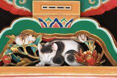 写真,素材,無料,フリー,フォト,クリエイティブ・コモンズ,風景,壁紙,東照宮の眠り猫, 眠り猫, 世界遺産, 左甚五郎, 木彫り