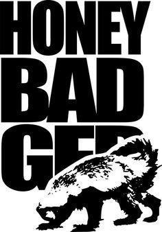 Honey Badger Honey Badger Humor, Harpy Eagle, Training Quotes, Peregrine Falcon, Rustic Bathrooms, Krav Maga, Hilarious, Funny, Tattoos
