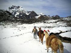 El Camino del Inca es declarado Patrimonio Mundial