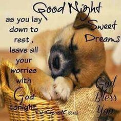 Goodnight | **SwE€t DreAmS** | Good night, Cute good night ...