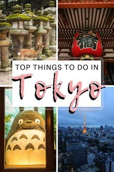 Visiting Tokyo for the first time? This Tokyo guide shows you all the best things to do in Tokyo including baseball game, Mario Kart, Fish Market, etc. Japan Travel Tips, Tokyo Travel, Asia Travel, Travel Hacks, Tokyo Guide, Japan Guide, Stuff To Do, Things To Do, Tokyo Japan